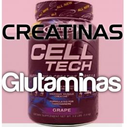 Creatinas y Glutaminas